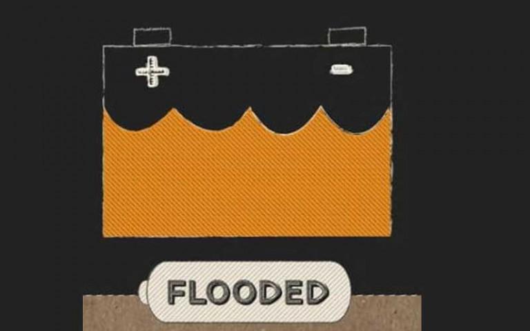 Flooded Lead Acid Batteries