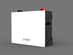 Dyness 5.12kWh Lithium-ion Battery